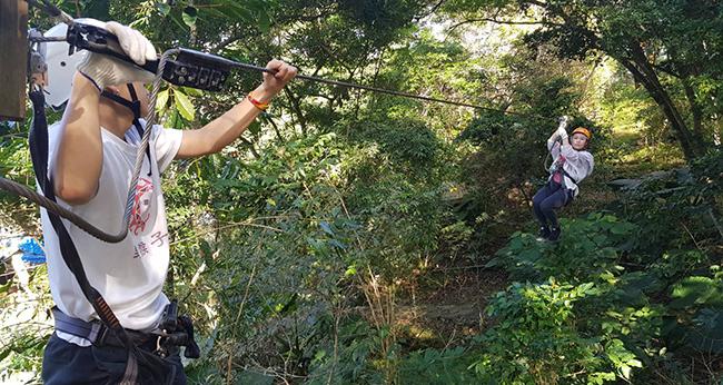樹冠層探險